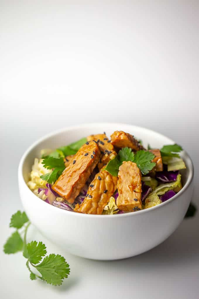 This raw vegan tempeh salad is low carb and packed wtih cancer fighting nutrients