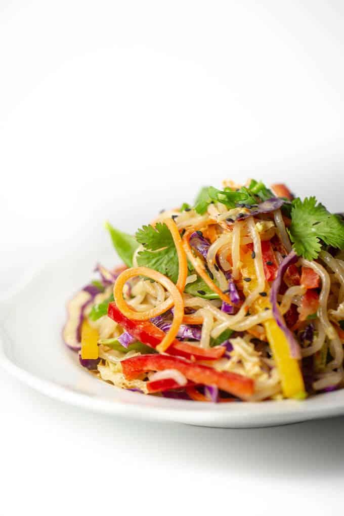 Raw Vegan Keto Thai Peanut Free Noodle Salad