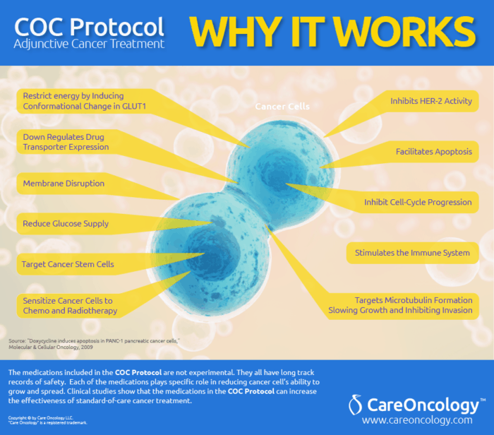 Care Oncology Clinic Protocol
